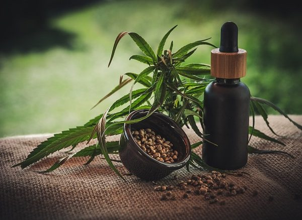 Is CBD Safe for the Environment?